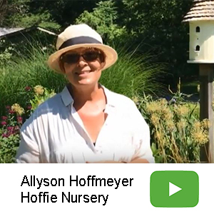 Hoffie Member Video